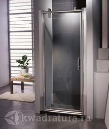 Душевая дверь Appollo TS-0509DL 100х200 левые